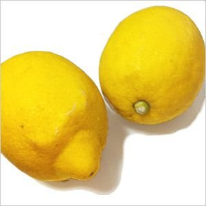 愛媛の無農薬レモン1kg|kanjyukuya