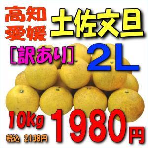 【愛媛・高知産】「訳あり」土佐文旦10kg2L|kankitsu