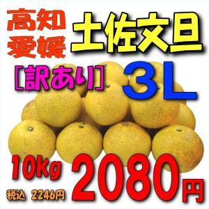 【愛媛・高知産】「訳あり」土佐文旦10kg3L|kankitsu