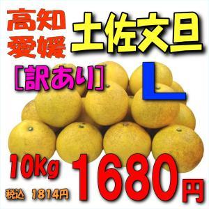 【愛媛・高知産】「訳あり」土佐文旦10kgL|kankitsu