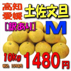 【愛媛・高知産】「訳あり」土佐文旦10kgM kankitsu
