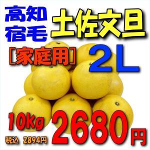 【高知宿毛産】「家庭用」土佐文旦10kg2L|kankitsu