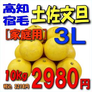 【高知宿毛産】「家庭用」土佐文旦10kg3L kankitsu