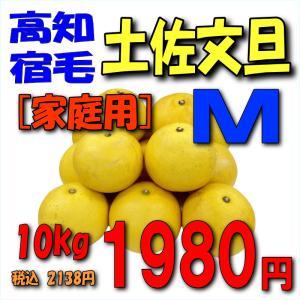 【高知宿毛産】「家庭用」土佐文旦10kgM|kankitsu