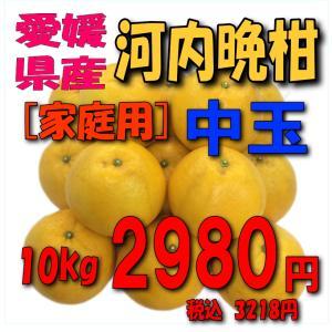 【愛媛産】「家庭用」河内晩柑10kg(中玉)|kankitsu