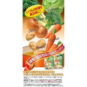 ヤマトDM便で【送料無料!】野菜ブイヨン 8包入 粉末タイプ※商品代引きは出来ません。※配送時間指定は出来ません。|kankuro-dashi|03