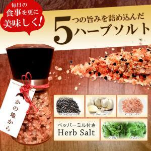 ハーブソルト 岩塩 ペッパーミル付き 200g|kanochikara