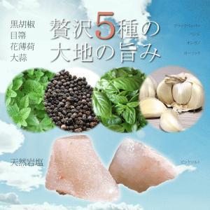 ハーブソルト 岩塩 ペッパーミル付き 200g|kanochikara|03