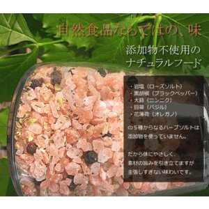 ハーブソルト 岩塩 ペッパーミル付き 200g|kanochikara|04