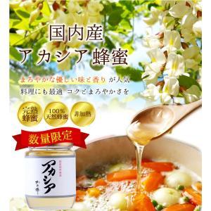 数量限定 国産アカシア蜂蜜(はちみつ) 300g ※お一人様2個まで 蜂蜜専門店 かの蜂|kanohachi