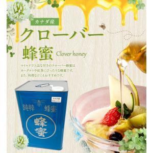 厳選 クローバー蜂蜜 カナダ産  24kg 一斗缶 大容量 業務用はちみつ専門店 かの蜂 kanohachi