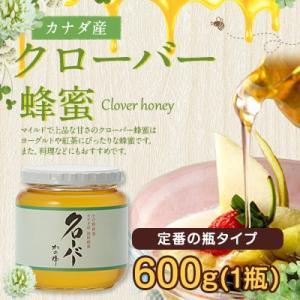 クローバー蜂蜜 カナダ産 厳選 クローバー 蜂蜜 600g はちみつ専門店 かの蜂|kanohachi