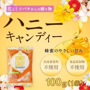 ハニーキャンディー 100g 蜂蜜 飴 キャンディー はちみつ専門店 かの蜂|kanohachi