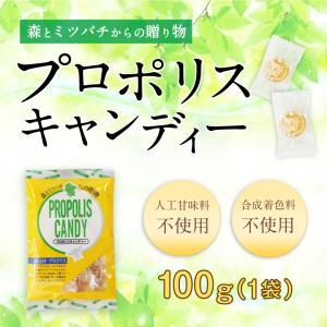 プロポリスキャンディー 100g 蜂蜜 飴 キャンディー はちみつ専門店 かの蜂|kanohachi