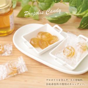 プロポリスキャンディー 100g 蜂蜜 飴 キャンディー はちみつ専門店 かの蜂|kanohachi|02