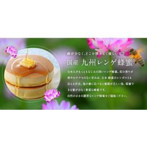 蜂蜜ギフト 送料無料 蜂蜜ギフト(250g×5本)れんげ蜂蜜、みかん蜂蜜、百花蜂蜜、そよご蜂蜜、クローバー蜂蜜蜂蜜専門店 かの蜂|kanohachi|03