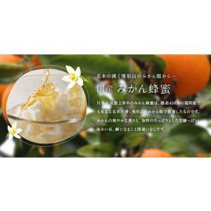 蜂蜜ギフト 送料無料 蜂蜜ギフト(250g×5本)れんげ蜂蜜、みかん蜂蜜、百花蜂蜜、そよご蜂蜜、クローバー蜂蜜蜂蜜専門店 かの蜂|kanohachi|05