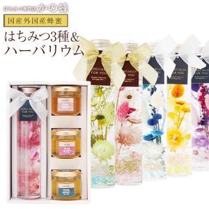 ギフト 蜂蜜3種と6色から選べるハーバリウム1本セット 国産レンゲ 国産百花 カナダ産クローバー  蜂蜜 送料無料 はちみつ専門店 かの蜂|kanohachi