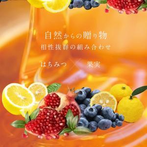 果汁入りはちみつ 500g 1本 単品 果汁蜜 ブルーベリー ザクロ レモン 蜂蜜 はちみつ 蜂蜜専門店 かの蜂|kanohachi|03