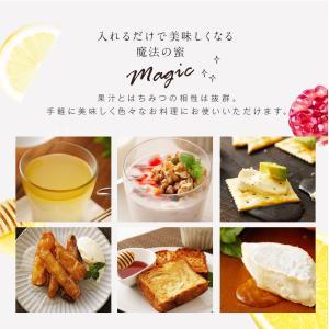 果汁入りはちみつ 500g 1本 単品 果汁蜜 ブルーベリー ザクロ レモン 蜂蜜 はちみつ 蜂蜜専門店 かの蜂|kanohachi|04