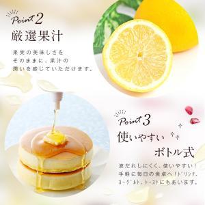 果汁入りはちみつ 500g 1本 単品 果汁蜜 ブルーベリー ザクロ レモン 蜂蜜 はちみつ 蜂蜜専門店 かの蜂|kanohachi|06