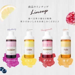 果汁入りはちみつ 500g 1本 単品 果汁蜜 ブルーベリー ザクロ レモン 蜂蜜 はちみつ 蜂蜜専門店 かの蜂|kanohachi|08