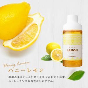 果汁入りはちみつ 500g 1本 単品 果汁蜜 ブルーベリー ザクロ レモン 蜂蜜 はちみつ 蜂蜜専門店 かの蜂|kanohachi|10