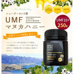 マヌカ蜂蜜 UMF10+(250g)マヌカ 蜂蜜 マヌカハニーニュージーランド産  蜂蜜専門店 かの蜂 kanohachi