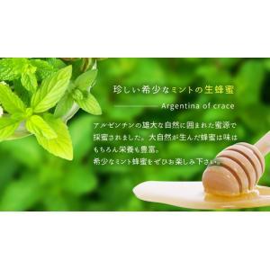 はちみつ アルゼンチン産ミント蜂蜜 300g 生蜂蜜 はちみつ専門店 かの蜂|kanohachi|02