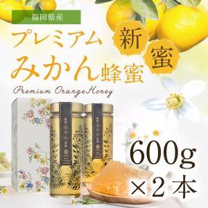 【予約販売】新蜜プレミアムみかん蜂蜜 6月中旬〜下旬より順次発送 国産 はちみつ みかん蜂蜜 蜂蜜専門店 かの蜂 |kanohachi