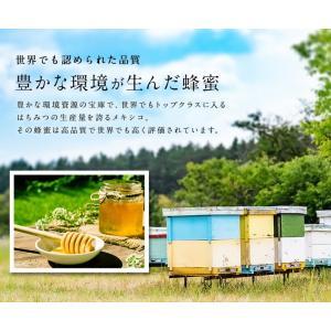 【メキシコ産】オレンジ蜂蜜 300g おれんじ 蜂蜜 完熟 純粋 はちみつ ハチミツ 蜂蜜専門店 かの蜂|kanohachi|03