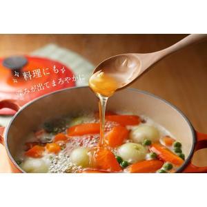 【メキシコ産】オレンジ蜂蜜 300g おれんじ 蜂蜜 完熟 純粋 はちみつ ハチミツ 蜂蜜専門店 かの蜂|kanohachi|09