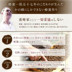 蜂蜜お試しセット エコパック  メール便送料無料 国産外国産の純粋はちみつ30種以上(1つ90g)から5つ選べる  蜂蜜専門店かの蜂|kanohachi|13