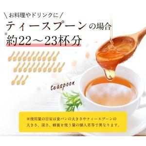 蜂蜜お試しセット エコパック  メール便送料無料 国産外国産の純粋はちみつ30種以上(1つ90g)から5つ選べる  蜂蜜専門店かの蜂|kanohachi|15