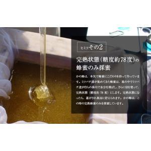 蜂蜜お試しセット エコパック  メール便送料無料 国産外国産の純粋はちみつ30種以上(1つ90g)から5つ選べる  蜂蜜専門店かの蜂|kanohachi|07