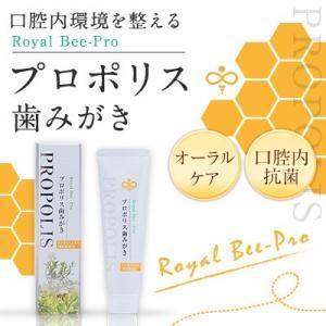 プロポリス歯磨き粉 100g プロポリ歯みがき プロポリス 蜂蜜専門店 かの蜂 kanohachi