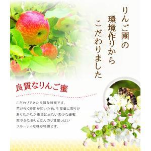 数量限定 国産 りんご蜂蜜 (はちみつ)  300g  ※お一人様2個まで はちみつ専門店 かの蜂|kanohachi|02