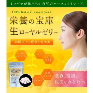 ローヤルゼリー 厳選ローヤルゼリー錠剤 100粒 はちみつ専門店 かの蜂|kanohachi