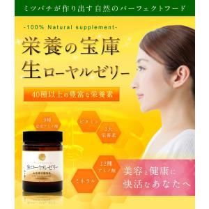 厳選生ローヤルゼリー100g 純粋生100%の王乳 はちみつ専門店 かの蜂|kanohachi