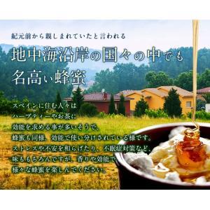 【スペイン産】ローズマリー蜂蜜 300g ローズマリー 蜂蜜 完熟 純粋 はちみつ ハチミツ 蜂蜜専門店 かの蜂|kanohachi|03