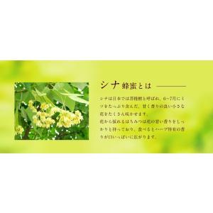 国産シナ蜂蜜 菩提樹蜂蜜 しな蜂蜜  蜂蜜 300g ハチミツ専門店 かの蜂 kanohachi 03