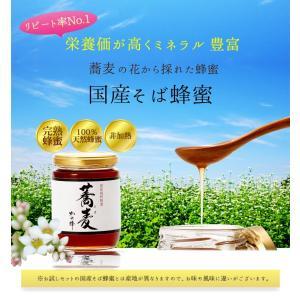国産 そば蜂蜜 北海道産 国産蜂蜜 300g はちみつ専門店 かの蜂|kanohachi