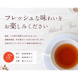 アウトレット 和紅茶 秀 ティーバッグ 紅茶 福岡産 気ごころ KIGOKORO 1回分 個包装|kanohachi|02