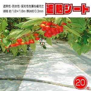 遮熱 シート カバー ロール ホワイト 万能 防水性 採光性 耐候年数 5年 養生等多目的シート サイズ 1.8×1.8m 20枚SET 国産 日本製 kanryu