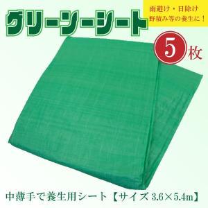 グリーンシート ビニールシート 緑 中薄Kシート #2000 建築・土木・養生等の多目的シート 規格 サイズ ( 3.6×5.4m ) 5枚セット|kanryu