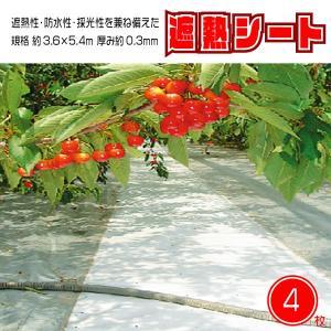 遮熱 シート カバー ロール ホワイト 万能 防水性 採光性 耐候年数 5年 養生等多目的シート サイズ 3.6×5.4m 4枚SET 国産 日本製 kanryu