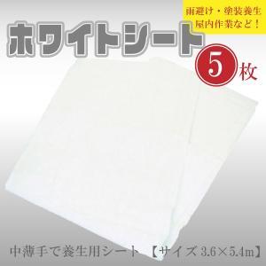 ホワイトシート ビニールシート 白 中薄Kシート #2000 建築・土木・養生等の多目的シート 規格 サイズ ( 3.6×5.4m ) 5枚セット|kanryu
