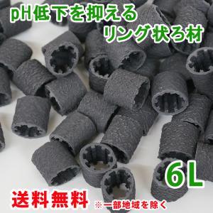 pH低下を抑える ろ材 リング バイオレジェンドBK 6L(3L×2) 関西化工|kansaikako