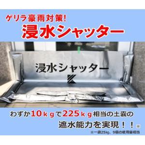 止水シート 軽量 取付簡単 浸水シャッター 関西化工 ゲリラ豪雨対策 (一間間口(2200×700))|kansaikako