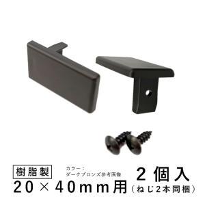 三協アルミ DIY ホロー材キャップ ホロー キャップ 樹脂 三協 KB-026-2 2個入り 20×40mm用 アルファプロ α-Pro 汎用材 部品 部材 汎用材 送料別|kantoh-house
